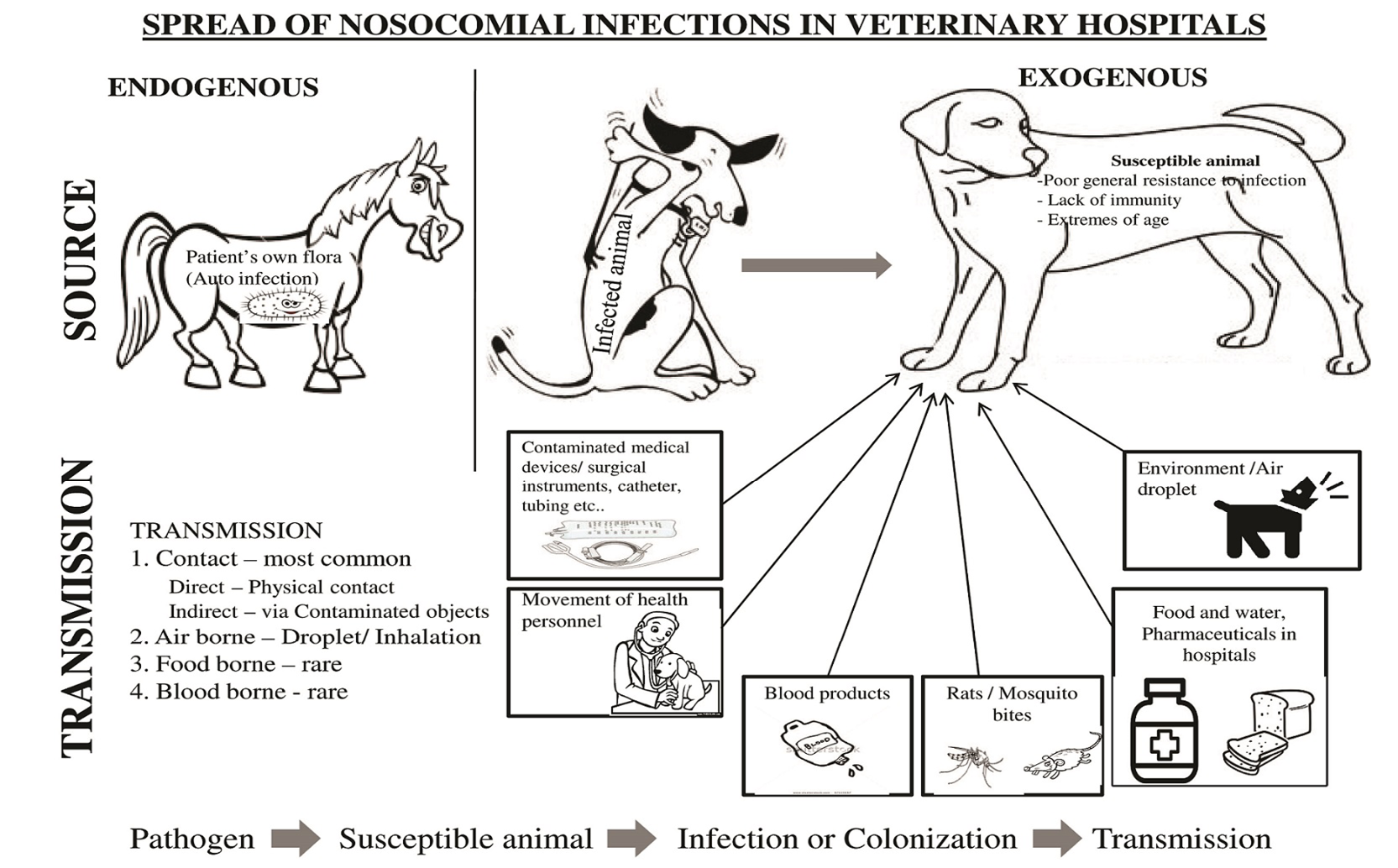 nosocomial infections essay Hospital acquired infections, complications - health associated infections my account preview preview essay about essay on nosocomial infections.