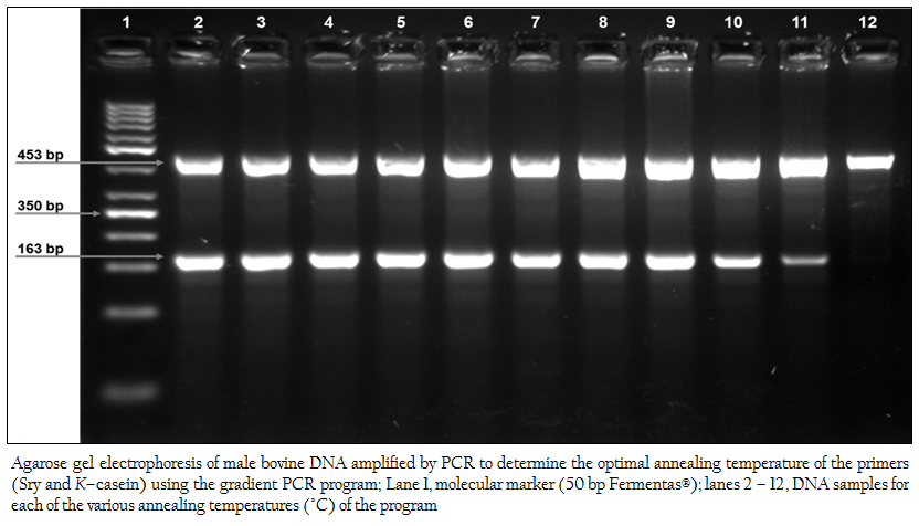 pcr research paper Research online is the open access institutional repository for the university of paper flexible analysis of digital pcr experiments using generalized linear.