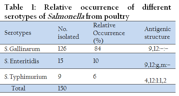 thesis salmonella poultry Immune modulation of salmonella enterica serotype pullorum in the chicken ying tang (bsc, mphil) thesis submitted to the university of nottingham for.